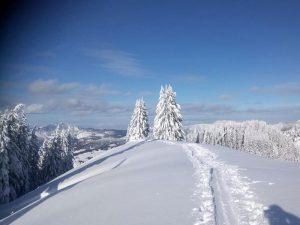 Wo gibt's den schönsten Schnee?